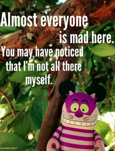 Alice Quotes- Almost everyone...