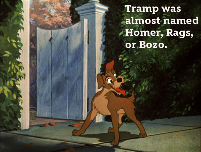 disney-facts-tramp